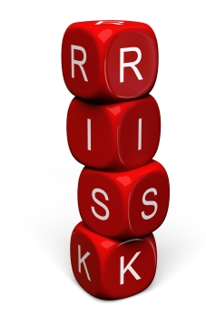 business it support risk